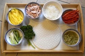 Ingrediënten Spring Rolls